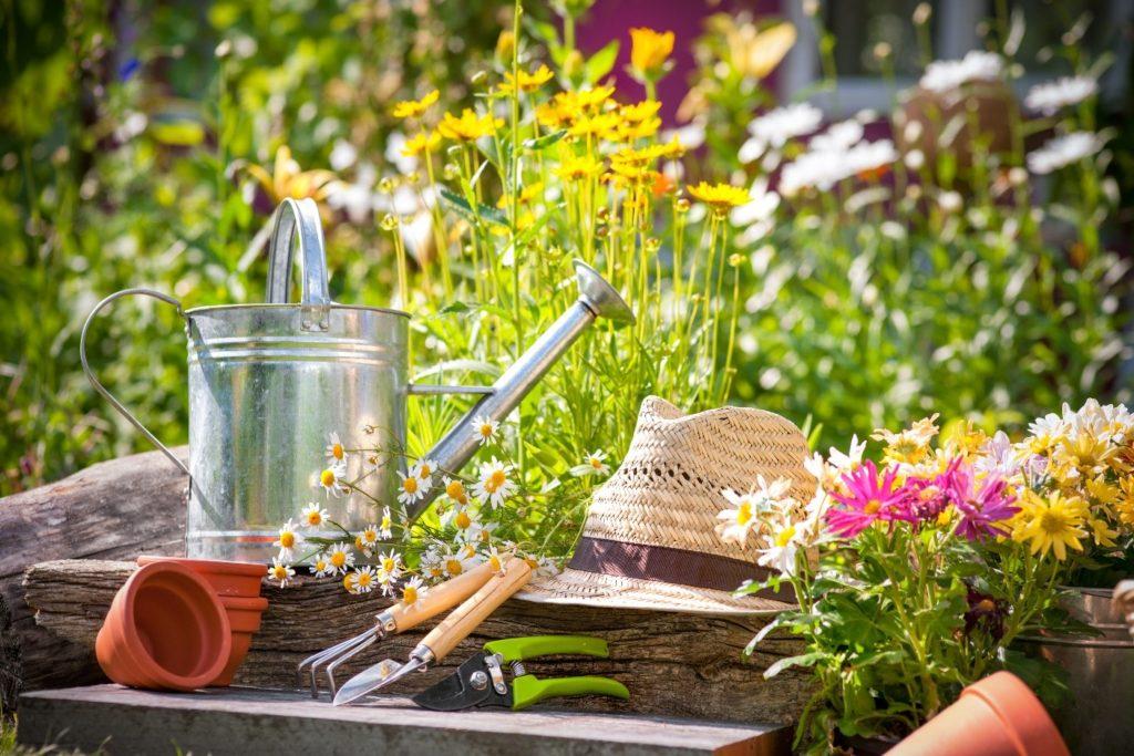 How Gypsum Can Help Your Garden Grow